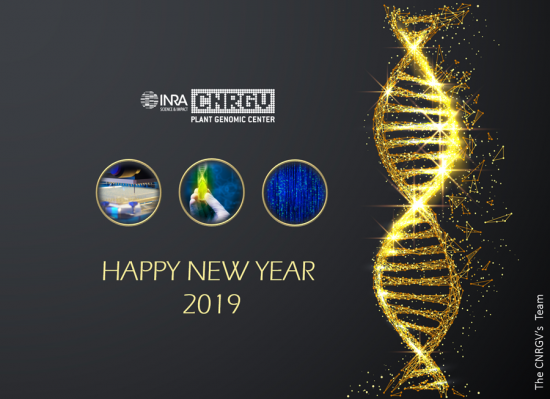 CNRGV greetings card 2019